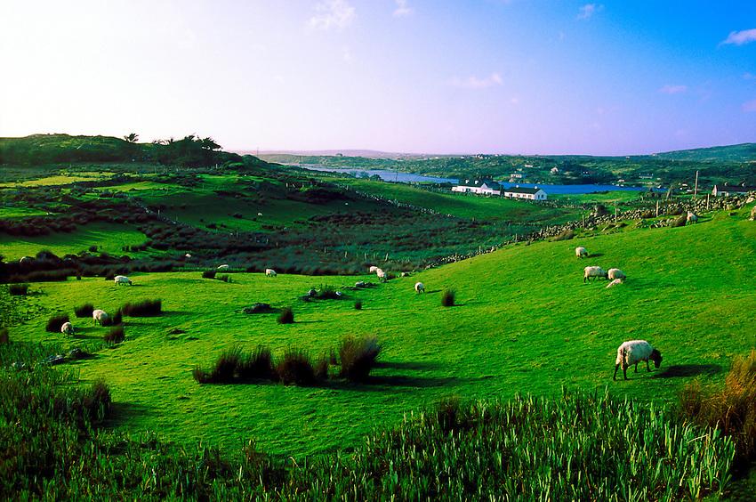 Sky Road, near Clifden, Connemara, County Galway, Ireland