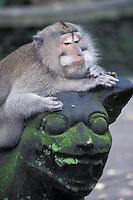 Monkey Resting on Statue in Monkey Forest, Ubud, Bali