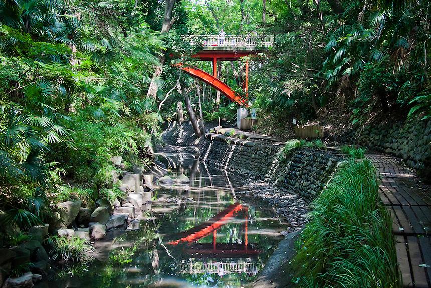 Tokyo`s Todoroki Valley with distinctive red Golf bridge reflected in the Yazawa river.
