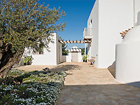 The front area of the house is paved with local stone and has one large flower bed with an ancient olive tree