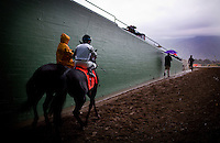 Eventual winner Slim Shadey, with jockey David Flores, walks to the track for the San Marcos Stakes at Santa Anita Park on February 10, 2012.