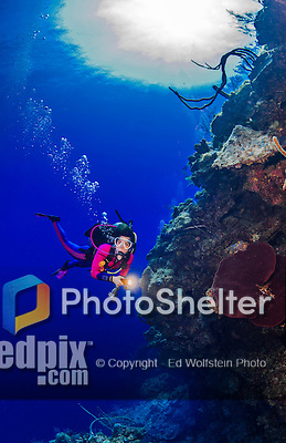 25 July 2015: SCUBA Diver Sally Herschorn explores the reef at Alex's Alley, on the North Shore of Grand Cayman Island. Located in the British West Indies in the Caribbean, the Cayman Islands are renowned for excellent scuba diving, snorkeling, beaches and banking.  Mandatory Credit: Ed Wolfstein Photo *** RAW (NEF) Image File Available ***