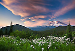 Late evening clouds complete a stunning vista of Mt. Rainier.  I never tire of photographing the dramatic clouds that are an everpresent crown on the highest volcano in the Cascade Range. Mt. Rainier National Park is also famous for its summer wildflower display.