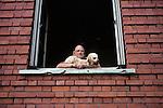 Man & Dog In Window