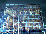 Barbequing chicken wings in a food cage with smoky delight.