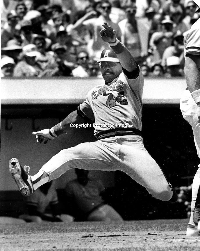 Reggie Jackson playing for the Angels slides into home.<br />(1982  photo by Ron Riesterer/photoshelter)