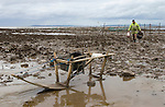 The Last Mudhorse Fishermen. UK 2008. The Sellick family, Stolford, Bridgewater Bay, Somerset.