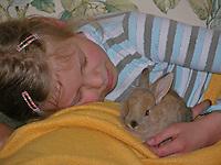 Zwergkaninchen, Zwerg-Kaninchen, Mädchen spielt, schmust und kuschelt mit Jungtier, dwarf rabbit