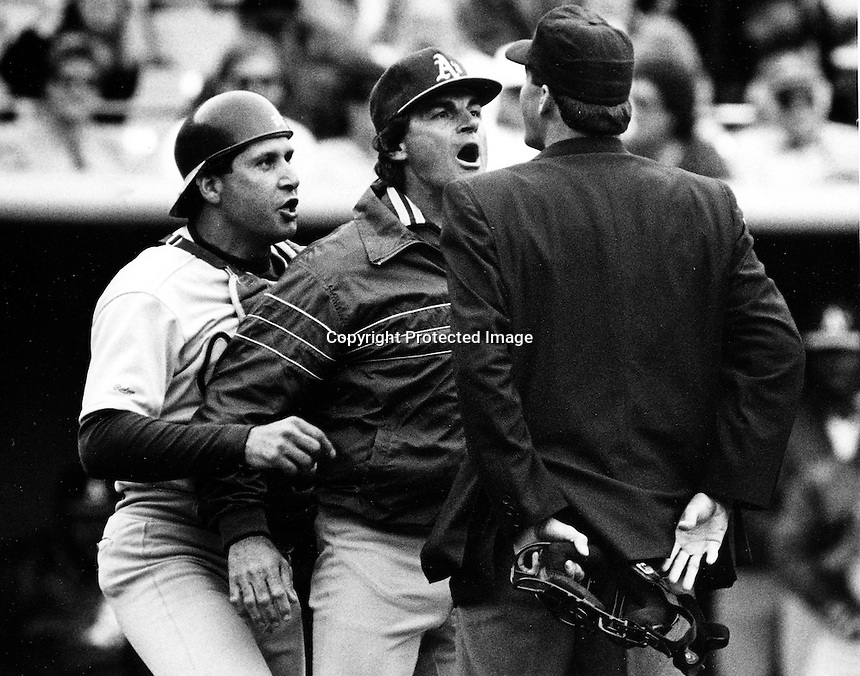 Manager Tony LaRussa gets in front of his catcher Ron Hassey during argument with the umpire..photo by Ron Riesterer