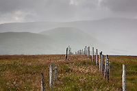 Fence descending Benbrack in the Galloway Hills, Southern Uplands, Scotland.