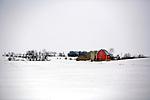 Farmstead in Southern Wisconsin.
