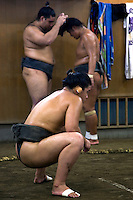 "Sumo ""keiko"" or practice at a sumo stable in Tokyo. Sumo is a competitive sport in Japan where two wrestlers attempt to force one another out of a circular ring.  The Japanese consider sumo a kind of martial art and the sumo tradition is very ancient. Even today the sport includes many ritual elements, such as the use of salt for purification, harking back to the days when sumo was used in the Shinto religion."