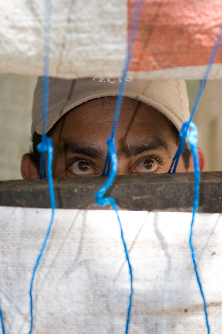 Field assistant Felix Medina waits in a hide/blind for a Cotton-top tamarin to appear. Dry tropical forest, Colomibia.