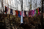 Laundry hangs in trees at the Makish Roma relocation camp near Ada Ciganlia in Belgrade.