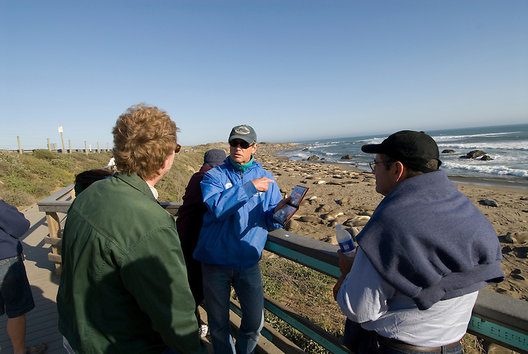 California, San Luis Obispo County:  Elephant Seals gather at Piedras Blancas beach.  Blue-jacketed docents of Friends of the Elephant Seals explain seals to visitors..Photo caluis195-70998..Photo copyright Lee Foster, www.fostertravel.com, 510-549-2202, lee@fostertravel.com