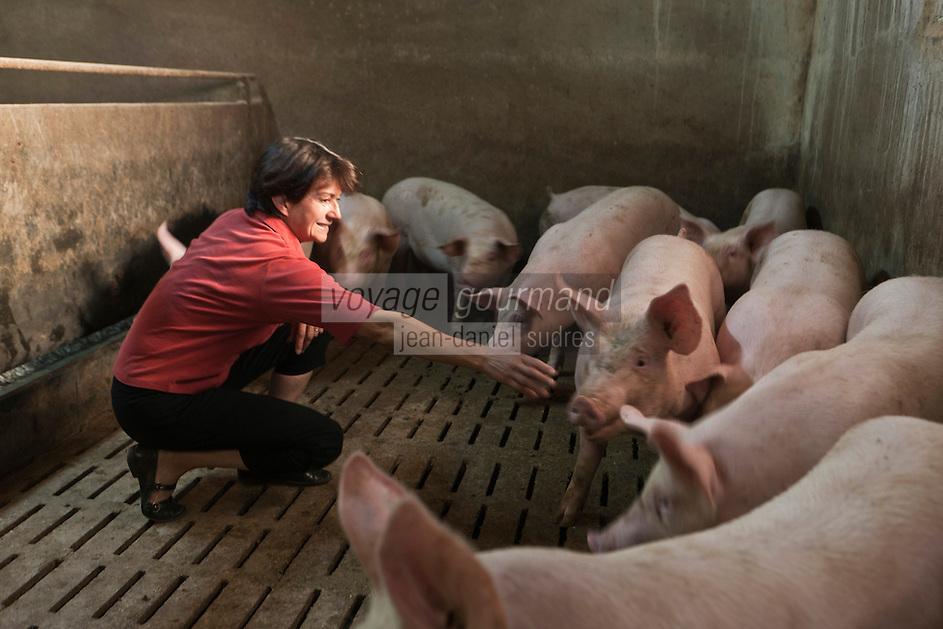 Europe/France/Midi-Pyr&eacute;n&eacute;es/12/Aveyron/Aubrac/La Terrisse: Anne Magne, &eacute;l&egrave;veuse de  porcs, pour Lucien Conquet Boucher Charcutier &agrave; Laguiole.<br /> Elle pr&eacute;pare elle-m&ecirc;me leur soupe, &agrave; base de c&eacute;r&eacute;ales, elle les nourrit elle-m&ecirc;me, matin et soir, quand elle p&eacute;n&egrave;tre dans leur &eacute;table, elle leur parle, les apaise: Sans stress, leur viande se tient, perd moins d'eau. [Non destin&eacute; &agrave; un usage publicitaire - Not intended for an advertising use]