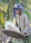A woman winnows rice in the Cambodian village of Char.