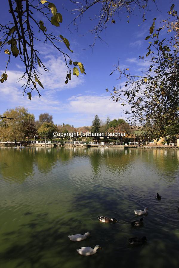 Israel, Upper Galilee, the lake at Kibbutz Yiron