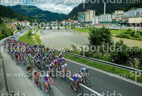 Peloton near Pivovarna Lasko during Stage 4 of 22nd Tour of Slovenia 2015 from Rogaska Slatina to Novo mesto (165,5 km) cycling race  on June 21, 2015 in Slovenia. Photo by Vid Ponikvar / Sportida