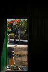 Fisherman repairing nets, with background of lampost,trees and houses, Mogan,Gran Canaria, Canary Islands,Spain