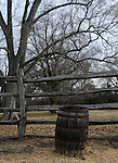 "Whiskey barrel with split rail fence Colonial Williamsburg Virginia, Colonial Williamsburg Virginia is historic district 1699 to 1780 which made colonial Virgnia's Capital, for most of the 18th century Williamsburg was the center of government education and culture in Colony of Virginia, George Washington, Thomas Jefferson, Patrick Henry, James Monroe, James Madison, George Wythe, Peyton Randolph, and others molded democracy in the Commonwealth of Virginia and the United States, Motto of Colonial Williamsburg is ""The furture may learn from the past,"""
