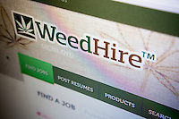 The home page for the website WeedHire is seen on a computer in New York on Thursday, August 21, 2014, the brainchild of David Bernstein and Vlad Stemak of AnythingIT. Over 20 states have legalized the use of marijuana to some degree and the industry is expected to grow 68 percent this year. The company faces competition other sites as the industry grows. (© Richard B. Levine)