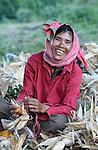 A woman shucks corn in the Cambodian village of Pheakdei.