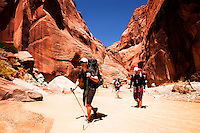 Buckskin Gulch-Paria Canyon-Vermilion Cliffs Wilderness