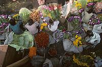 India, 1996