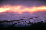 Austur Skaftafells, Breidamerkurjokull Glacier, Iceland