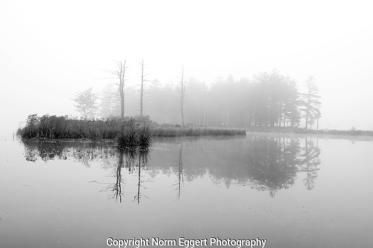A Foggy Morning at Tully Lake in Royalston, MA