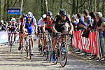 The peloton led by Gianni Moscon (ITA) Team Sky, Greg Van Avermaet (BEL) BMC Racing and Tom Boonen (BEL) Quick-Step Floors tackle the famous cobbled climb of Kemmelberg during Gent-Wevelgem in Flanders Fields 2017 running 249km from Denieze to Wevelgem, Flanders, Belgium. 26th March 2017.<br /> Picture: Eoin Clarke | Cyclefile<br /> <br /> <br /> All photos usage must carry mandatory copyright credit (&copy; Cyclefile | Eoin Clarke)