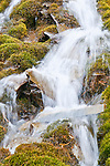 Unnamed roadside waterfall, Icefields Parkway, Banff National Park, Alberta, Canada