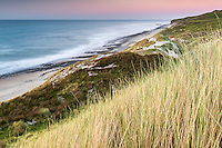 Twilight over remote coastline with sand dunes and marram grass near Paturau on west coast of South Island, Nelson Region, New Zealand