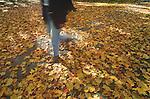 Campus: Autumn