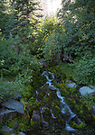 Idaho, North Central, Riggins, Nez Perce National Forest.  A small falls in the Seven Devils Mountains in summer.
