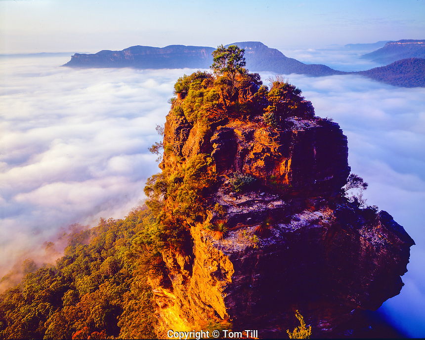 Fog at the Three Sisters, Blue Mountains National Park, Australia New South Wales