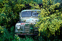 An old, battered truck parked among a flowering bush in New Zealand. I made this image while retracing Mark Twain's journey around the world exactly 100 years earlier.