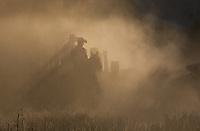 Sepia silhouette of two cowboys driving cattle through early morning dust with shadows falling behind them and cattle visible on right