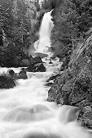 Warm temperatures and a heavy snowpack send a torrent of late Spring snowmelt 283 feet down Fish Creek Falls.