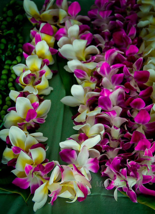 Fresh orchid leis made in Hawaii at the Merri Monarch Festival and Hawaiian Lifestyle covering the people, activities, location, culture, unique traditions, art, food and culture