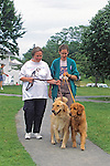 Golden Retrievers & Owners