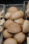 Portabello mushrooms on sale at market stall. viktualienmarkt. Munich, Germany.