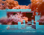 Front Porch on Alameda Street, Santa Fe (Infrared) © 2017 James D Peterson.  My infrared camera gives this classic New Mexico home a fiery front yard.