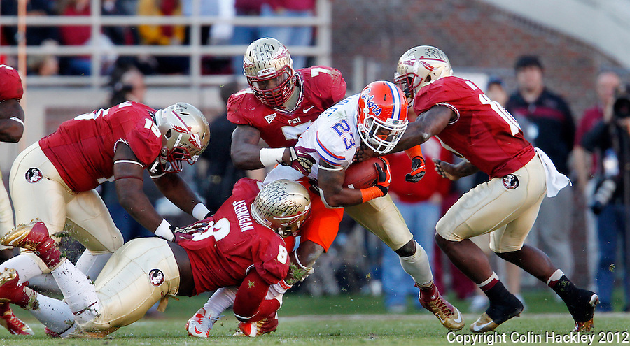 TALLAHASSEE, FL 11/24/12-FSU-UF112412 CH-Florida State's Mario Edwards, Jr., left, Timmy Jernigan, Christian Jones and Nick Moody tackle Florida's Mike Gillislee during first half action Saturday at Doak Campbell Stadium in Tallahassee. .COLIN HACKLEY PHOTO