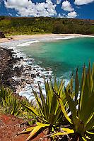 Remote Alertons Beach on Kauai's south shore