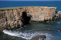 California, Point Arena, Coastal bluffs
