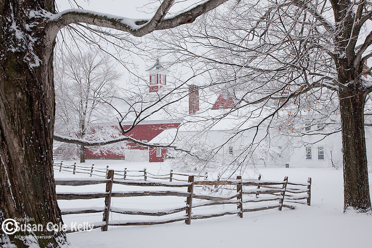 A snowy red farm framed by maple trees in Hollis, NH, USA