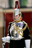 Soldier of the Blues and Royals Regiment on guard duty in London, United Kingdom