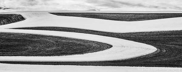 August Featured Portfolio:  Images from Palouse Farm Country